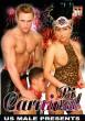 Bi Carnival DVD - Front