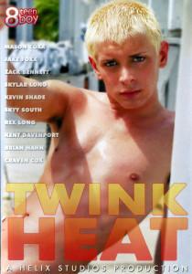 Twink Heat DVD (S)