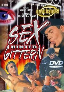 Sex Hinter Gittern DVDR (NC)