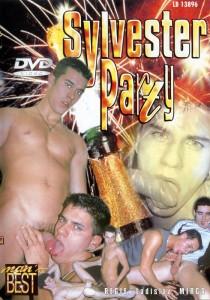 Sylvester Party DVDR