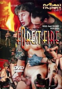 Forest Fire DVDR