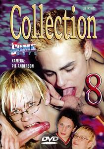 Game Boys Collection 8 - Nackte Tatsachen + Little Arrow DVDR (NC)