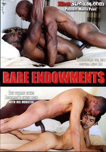 Bare Endowments DVD (S)