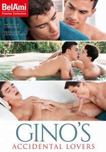 Gino's Accidental Lovers DVD (S)