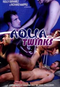 Aqua Twinks DVD