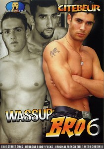 Wassup' Bro 6 DVD (S)