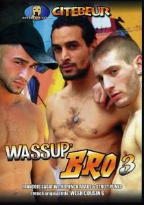 Wassup Bro 3 DVD