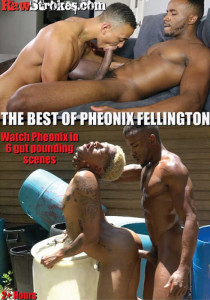 The Best of Pheonix Fellington DVD