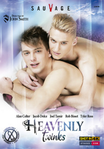 Heavenly Twinks DVD