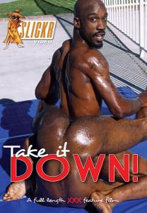 Take It Down DVD (NC)